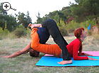 Paired Yoga